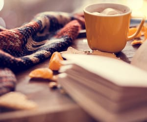 autumn, blanket, and book image