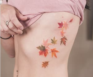 aesthetic, delicate, and leaves image