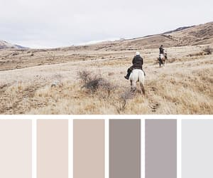 aesthetic, autumn, and color image