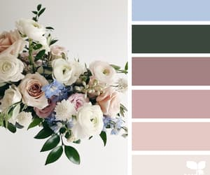 aesthetic, bouquet, and color image