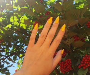 chic, fashion, and hands image
