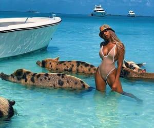 bahamas, traveling, and vacation image