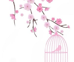 bird, cage, and bird cage image