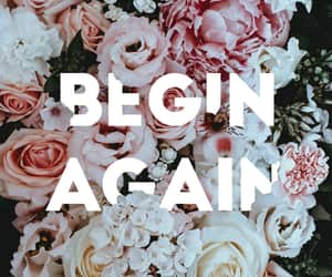 floral, wallpaper, and begin again image