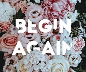 floral, wallpaper, and begin again image