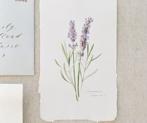 lavender, watercolour, and art image