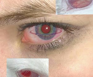 eyes, red, and cat image