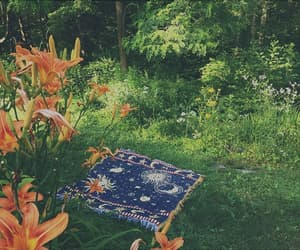 flowers, nature, and hippie image