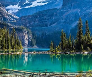 canada, national park, and water image