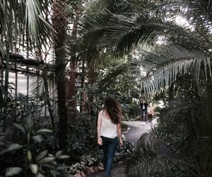 girl, green, and greenhouse image