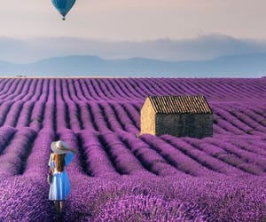 balloons, blue dress, and flower field image