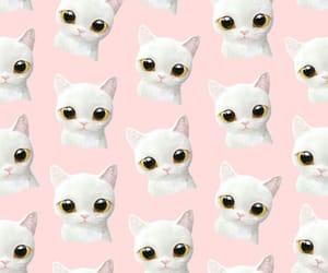 cat, gato, and patron image