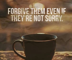 forgive, quotes, and sorry image