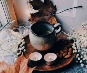 coffee, fall, and leaves image