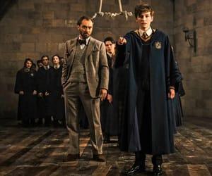 harry potter, albus dumbledore, and newt scamander image