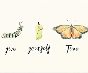 quotes, butterfly, and time image