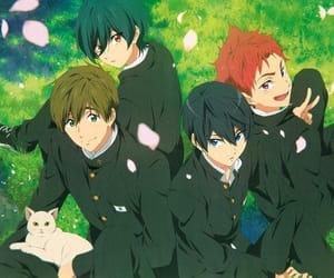 haru, free!, and anime image