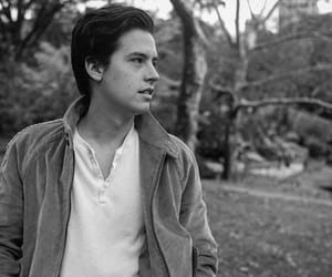 cole sprouse, actor, and cole image