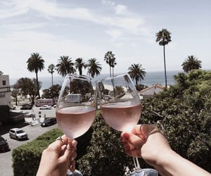 drinks, palms, and place image