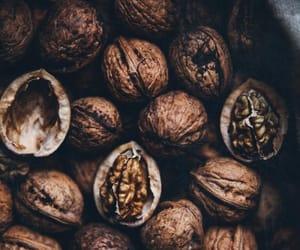 walnuts, autumn, and fall image