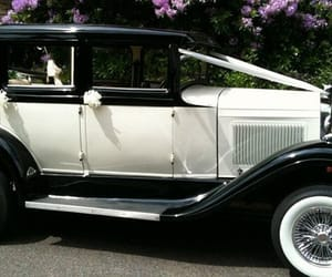 wedding car hire and wedding bus hire image