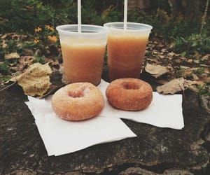 autumn, fall, and donuts image
