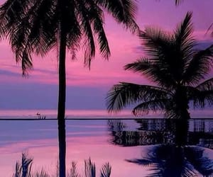 beach, pink, and travel image