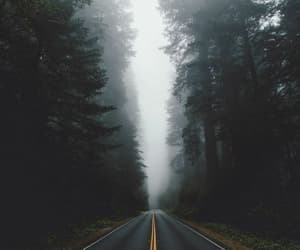 adventure, photography, and roadtrip image