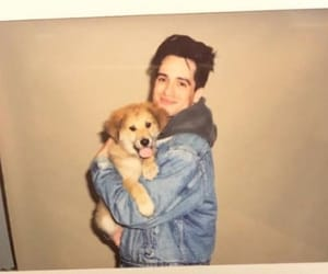 brendon urie, dog, and P!ATD image