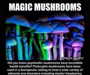 help, psychedelic, and medicine image