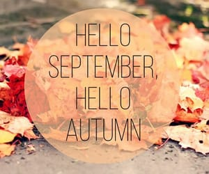 autumn, September, and leaves image