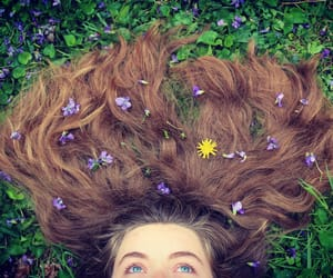 blue, clover, and spring image
