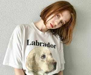 dog, dogs, and hair image