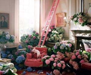 arrangement, bouquet, and floral image