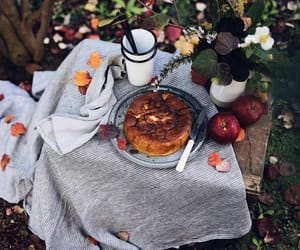 aesthetic, food, and apple image