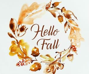 autumn, fall, and hello fall image