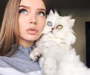 girl, blue, and cat image