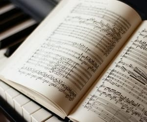 beauty, music, and piano image
