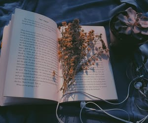 aesthetic, books, and flowers image