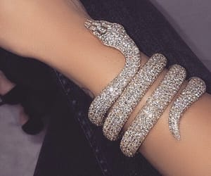 snake, diamond, and jewelry image