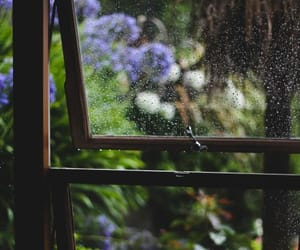 rain, window, and nature image