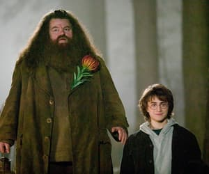 harry potter, goblet of fire, and hagrid image