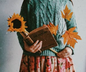 aesthetics, autumn, and florals image