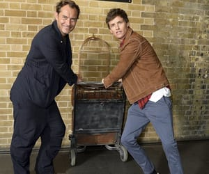 eddie redmayne, jude law, and harry potter image