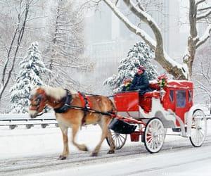 christmas, snow, and ny image