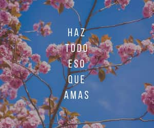 amor, amor propio, and desamor image