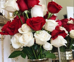 red rose, roses, and white rose image