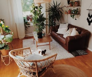 boho, plants, and decor image