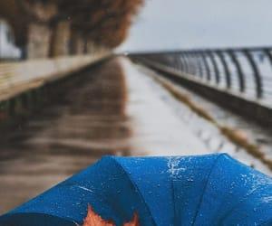 autumn, blue, and rain image