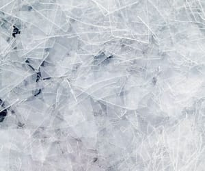 winter, ice, and cold image